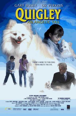 ähnliche Filme Wie Nur Hunde Kommen In Den Himmel Suchefilme