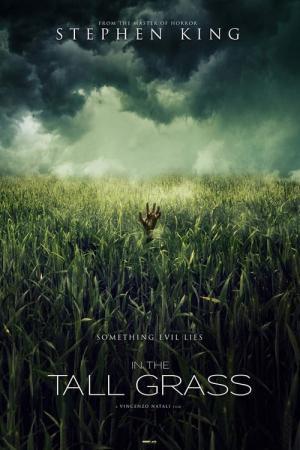 Im Hohen Gras Film